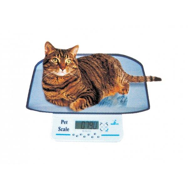 GIMA  Bilancia veterinaria per piccoli animali - cod.27261