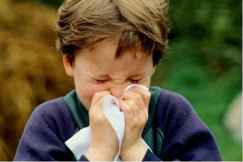 sintomi allergia acari